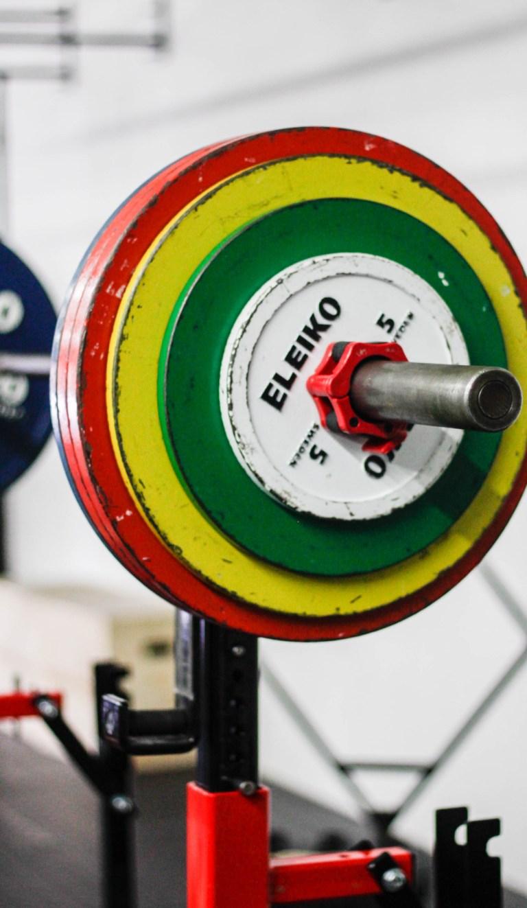 Understanding The Health of Your Fitness Business | Zen Planner